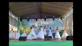 Парад невест 2012 в Тольятти, сюжет на СТС