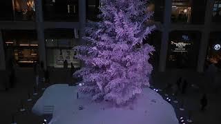 DSCN3364クリスマス20171215インフィオラータKITTE thumbnail