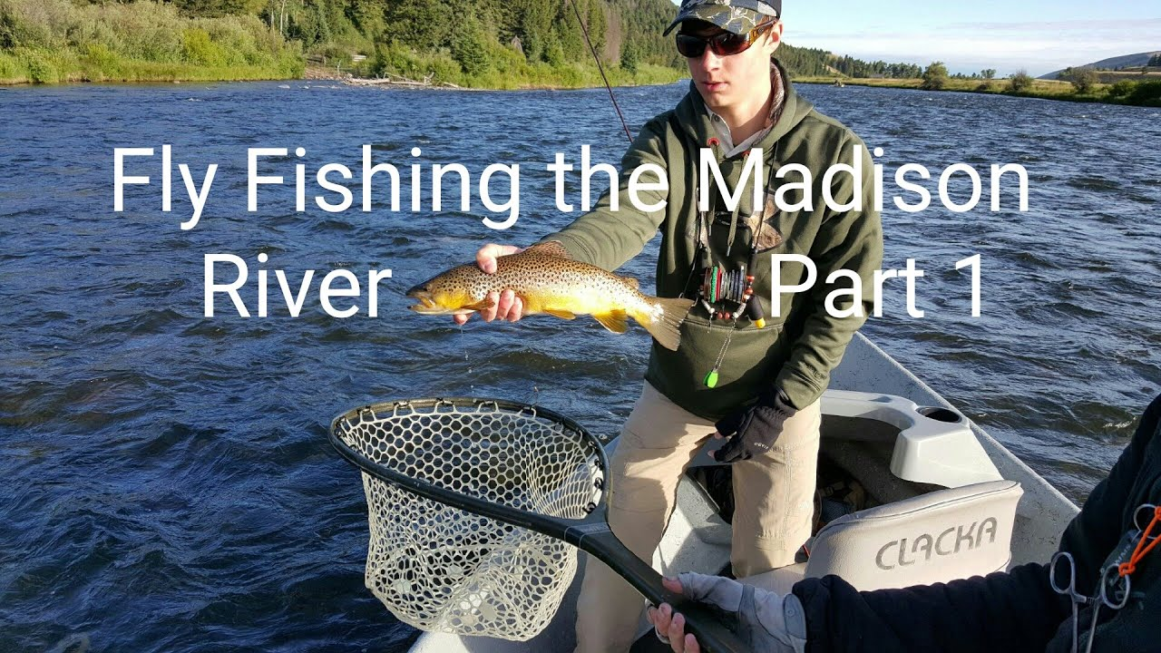 Montana fly fishing the madison river 2015 part 1 youtube for Montana out of state fishing license