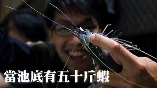 【蝦VLOG】把你的餌料放下! 這時候空鉤反而比較好釣? | 2019/09/27