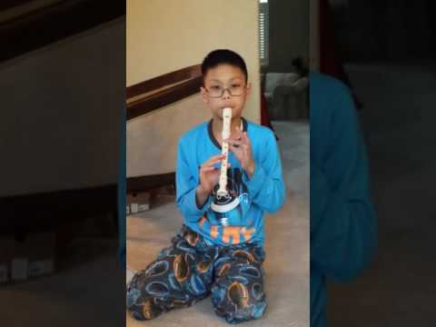 Joy to The World played on Soprano Recorder