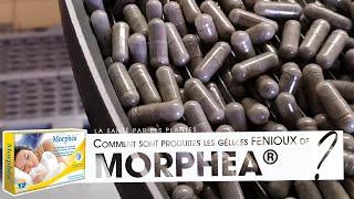 Morphéa® - La production des gélules par FENIOUX