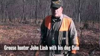 Grouse Hunting With German Shorthaired Pointer