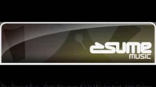 The Desert Sun - Gabi Newman & Liz Mugler feat. Alex Senna (Tune Brothers Remix)