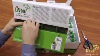 LiVes LTD – Упаковка Health Multipack . (пектин + бальзам)