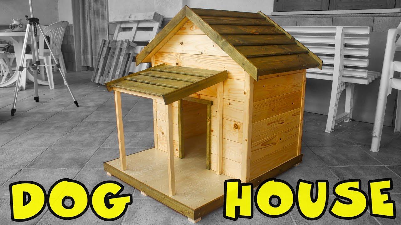 Come Costruire Una Cuccia Coibentata dog house (cuccia per cani)