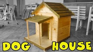 Dog House (Cuccia per cani)