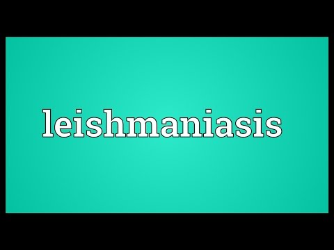 Leishmaniasis Meaning