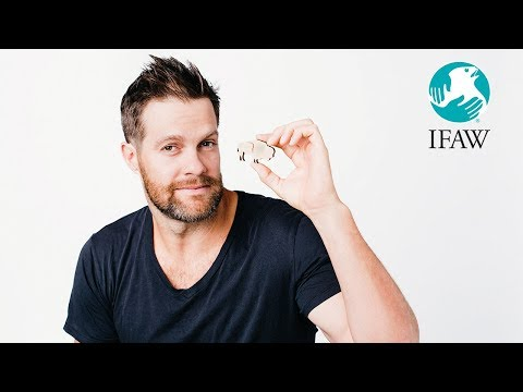 Geoff Stults  One Act for All