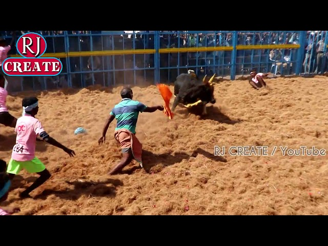 Anbil jallikattu 2(அன்பில் ஜல்லிக்கட்டு) 2019 PART 2