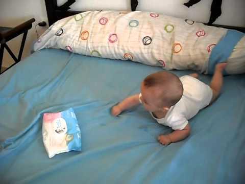 cuanto oportunidad gatean los bebes