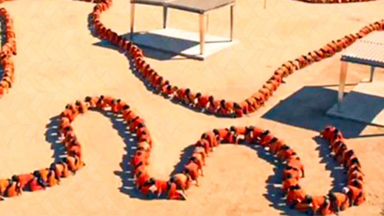 human centipede 3 deutsch