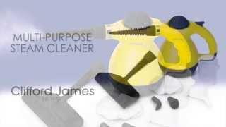 Multi-Purpose Steam Cleaner