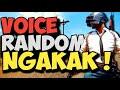 Ngakak Orang Sunda Ketemu Pinoy Ancur Pubg Indonesia  Mp3 - Mp4 Download