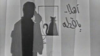القاهرة والناس: أهلاً يا قطة