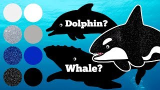 Sea Animals for Kids, Sea animals Learn Name and Sounds Killer Whale, Sperm Whale, Humpback Whale