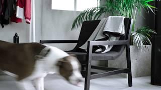 IKEA SPÄNST系列 產品影片-椅子