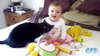Наши любимые домашние животные с детьми / Funny animals / Приколы 2014 / Смотрим