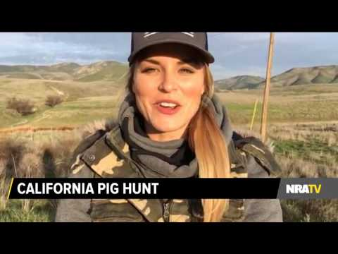 California Pig Hunt With Carly Twisselman And Billy Birdzell