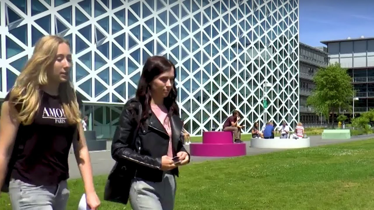 Dutch university of applied sciences | Windesheim - Windesheim