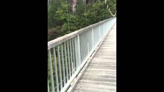 川俣温泉 瀬戸合峡にある吊り橋