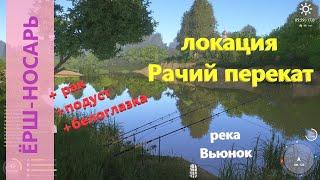 Русская рыбалка 4 река Вьюнок Ёрш носарь и другие редкие рыбки