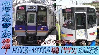 8000系・12000系特急「サザン」なんば行き だんじり祭開催中の南海本線春木駅通過!