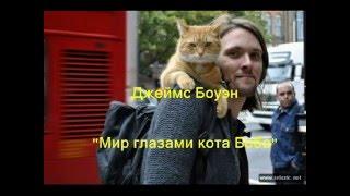 """""""Мир глазами кота Боба"""""""