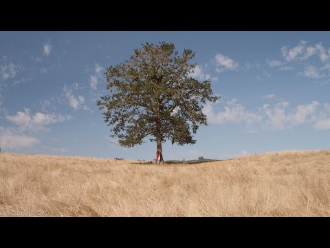 """The Giving Tree"" A short film"