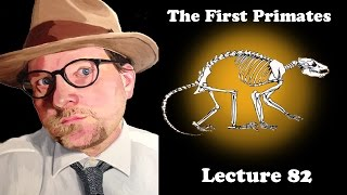 Lecture 82 The First Primates