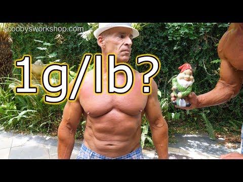 Protein Requirement For Bodybuilders