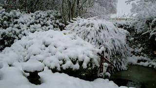 Sneen falder.wmv