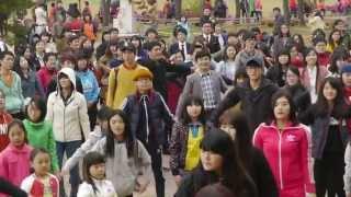 순천만 아리랑 플래시몹_에코댄스(Suncheon Bay…