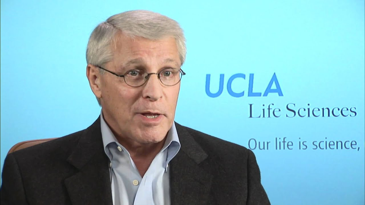 Witte | UCLA Broad Stem Cell Center