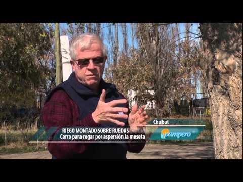 Pampero TV. 11-02-2016.