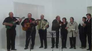Baixar Irmãos Ceolin cantam Destinos Iguais  - Tonico E Tinoco