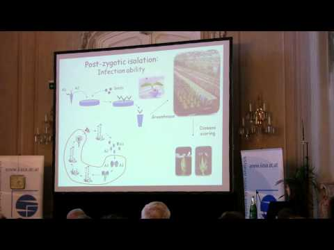 Speciation 2010: Tatiana Giraud - Cryptic species and evolution of reproductive isolation