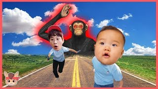 Learn Colors with Kids Toys Nursery Rhymes Color Song For Kids & Children 엄청 큰 원숭이 따라와요! 색깔놀이 장난감 놀이