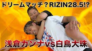 初の総合格闘技挑戦で浅倉カンナとガチスパーリングしたらまさかの失神【コラボ動画】