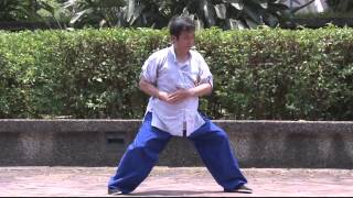 Chen Taiji Second Form: Cannon Fist