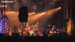 The Revivalists - Hulaween 2016