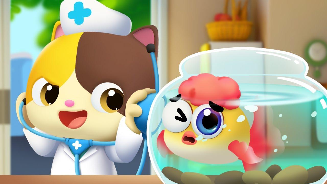 Chú cá vàng của mèo con Mimi | Chăm sóc cá vàng bị ốm | Nhạc thiếu nhi vui nhộn | BabyBus