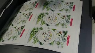 Печать листовок на принтере OKI 9655(, 2016-11-25T01:42:18.000Z)