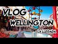 Wellington Vacation Travel Guide  Expedia - YouTube