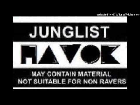 DnB mix 2013 Animal Instincts (havok soundsystem)