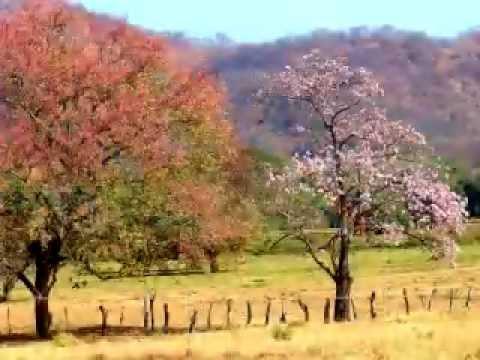 Pampa [Folklore de Costa Rica]