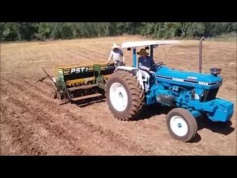 trator ford 6610 turbo puxando semeadeira tatu de 7 linhas /corn planting