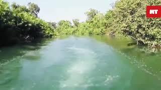 Nature Speaks : Maila Nala in the Tarai of Uttar Pradesh