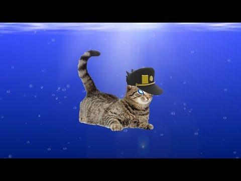 JOJO Cat Fight (subbed)