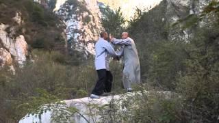 Master Wu Nanfang teaching Michael